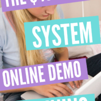 The $460:Day System - (Online Demo Training)